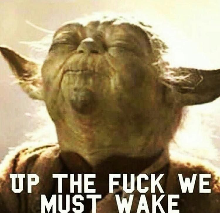 Yoda - Up the Fuck we must wake